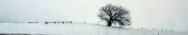 Haunted Winter