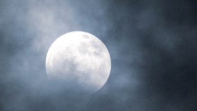 Blue Moon (1 of 1)
