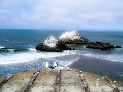 Chillin' at Cliff House (1 of 1)
