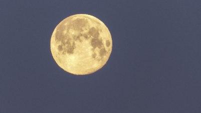 Full Moon (1 of 1)
